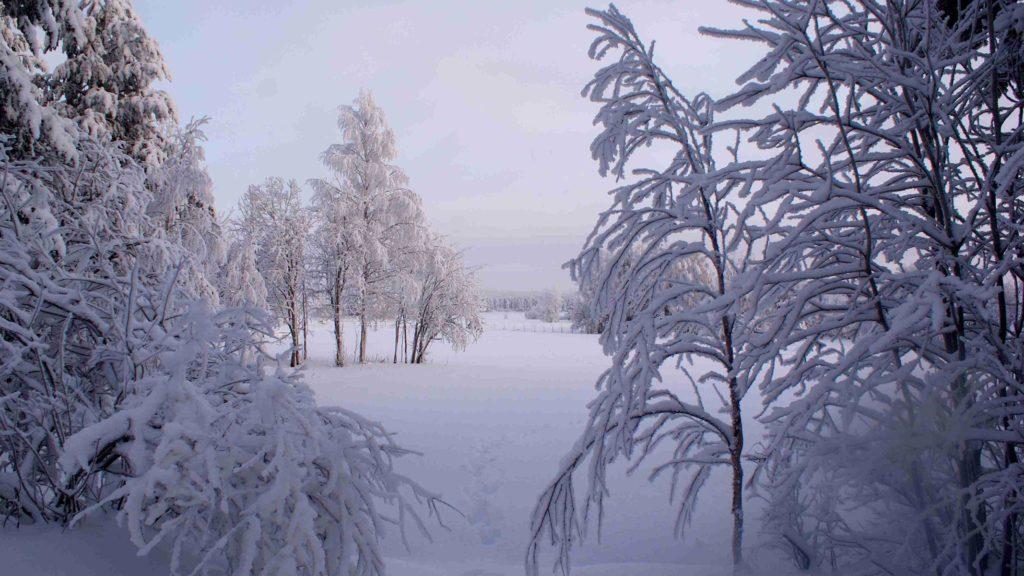 ロシアの雪景色